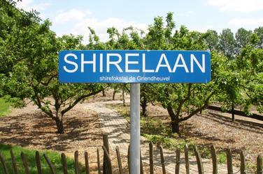 Shirelaan bord